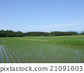 稻田01 21091603