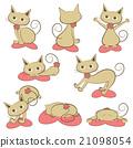 猫 猫咪 一组 21098054