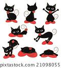 猫 猫咪 一组 21098055