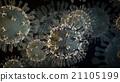 Bacteria, virus, H1N1 21105199