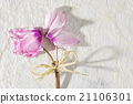 Bouquet of pink cyclamen, white paper background. 21106301
