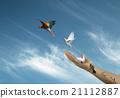 Graphic Image 21112887
