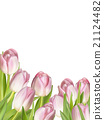 Pink fresh tulips on white. EPS 10 21124482