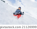 sleighs, sled play, playing with sleds 21126999