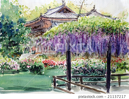 Kasuga Shrine's wisteria sketch 21137217