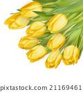 잎, 벡터, 노란색 21169461