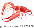 Handwork watercolor illustration of lobster 21170470