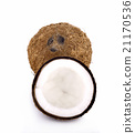 coconut on white background 21170536