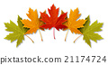 Autumn Leaves 21174724