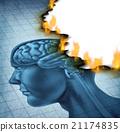 Brain Disease 21174835