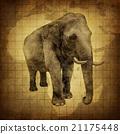 Elephant On a Grunge Texture 21175448