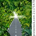 Escape The Jungle 21175470