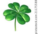 Four Leaf Clover 21175588