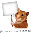 Pet Hamster Holding A Blank  Sign 21176358
