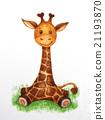 Cute baby  giraffe. 21193870