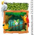 鳥兒 鳥 金剛鸚鵡 21232221