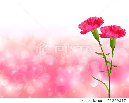 母亲节康乃馨花背景 21239857
