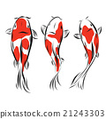 Vector image of an carp koi on white background 21243303