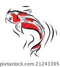 Vector image of an carp koi on white background 21243305