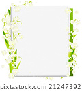 lily of the 21247392