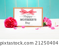 Mothers day card with pink carnations 21250404