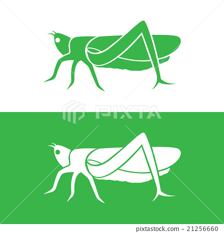 Vector image of an grasshopper design  21256660