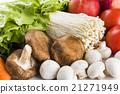 蔬菜 青菜 生菜 21271949