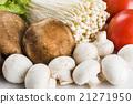 蔬菜 青菜 食品 21271950