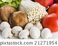 蔬菜 青菜 蘑菇 21271954