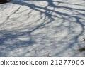 หิมะ,ผีหิมะ,พายุหิมะ 21277906