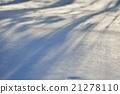 หิมะ,ผีหิมะ,พายุหิมะ 21278110