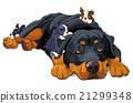 Rottweiler Family 21299348