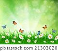 daisy vector background summer design 21303020