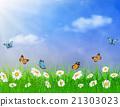 daisy vector background summer design 21303023
