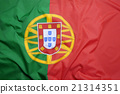Flag of Portugal 21314351