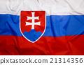 Flag of Slovakia 21314356