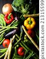 蔬菜 食品 夏令時蔬 21315599