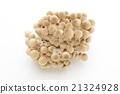 蟹味菇 蘑菇 食品 21324928