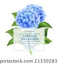 Invitation card. Blue hydrangea flowers. Vintage 21330283