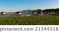 Fish farm at Lake Tondano 21344318
