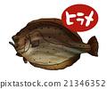 咸水鱼 海水鱼 海鱼 21346352