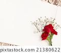카네이션, 안개꽃, 화이트보드 21380622