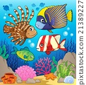 Coral reef fish theme image 1 21389227