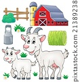 Goat theme collection 1 21389238