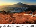 富士山 早晨 小柴胡汤湖 21390403