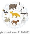 홋카이도의 동물 세트 21398892