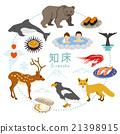 知床 遊覽 旅遊業 21398915