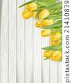 잎, 꽃, 노란색 21410839