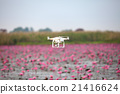 Drone aircraft  hovering on lake of pink lotus. 21416624