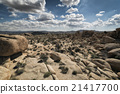 Joshua Tree National Park, California 21417700